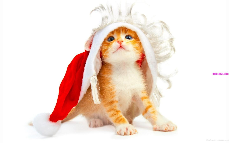 Foto sfondi desktop natale gratis 18 sfondi gratis di for Natale immagini per desktop