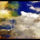 gaeta air show  16