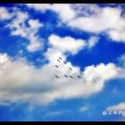 gaeta air show  19