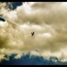 gaeta air show  24