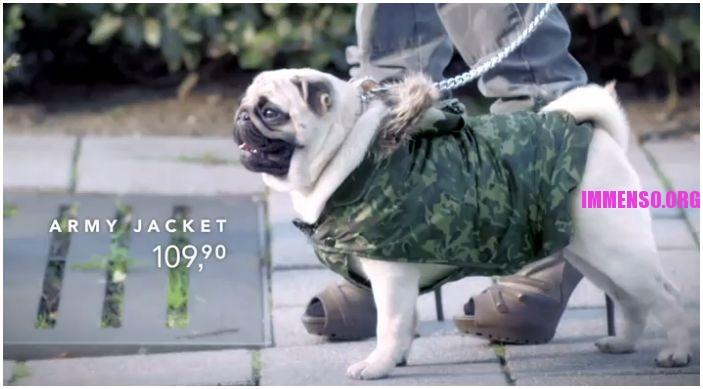 vestitini per cani