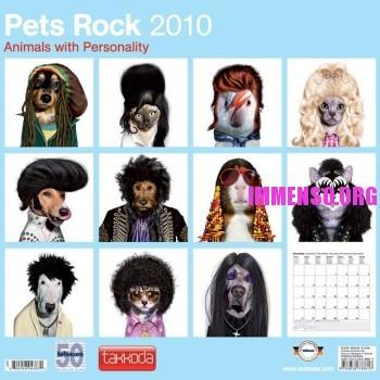 cani e gatti con pettinature di rockstar come Amy Winehouse