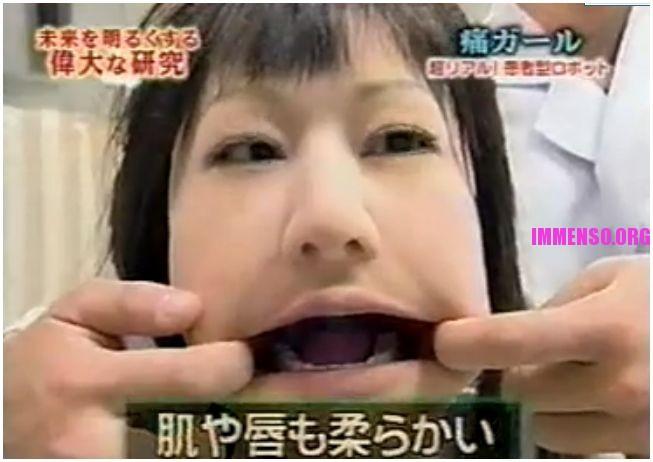 robot cavia per dentisti