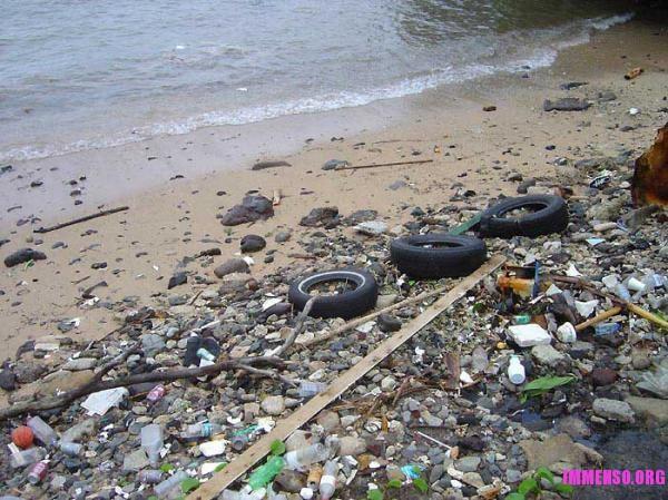 spiaggia immondizia