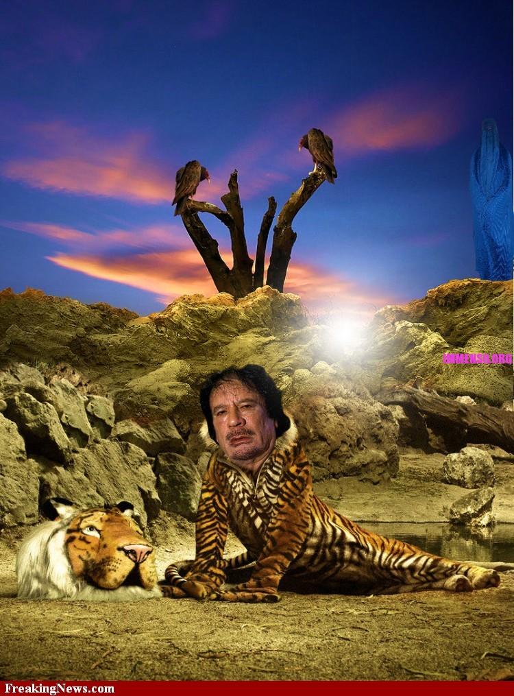 Fotomontaggi Divertenti Di Gheddafi Di Maghi Del Photoshop