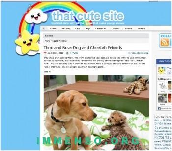that cute site sito animali 350x307