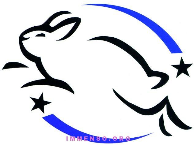 cruelty free, cosmetici non testati su animali