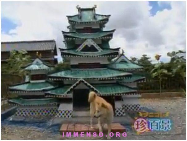 Cuccia di cane a forma di castello giapponese for Tetti giapponesi