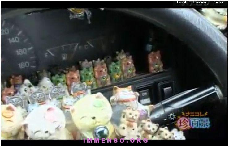 tazi giapponese con tanti peluche di gatti