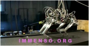 robot più veloce record