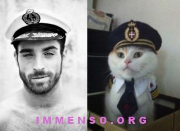 uomini bellissimi con gatti 11