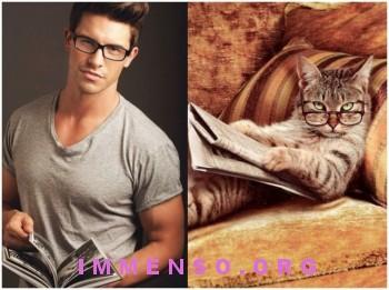 uomini bellissimi con gatti 23