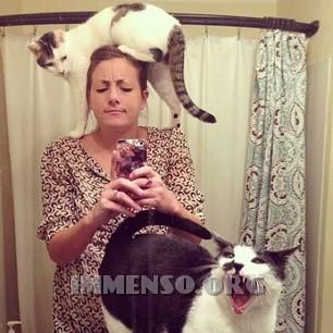 autoscatto con gatto