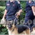 carabinieri ritrovamento andrea loris