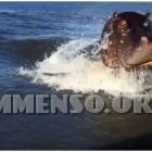 ippopotamo attacca la barca video