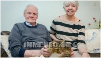 gatto cremato inghilterra
