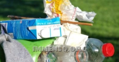 Tariffa rifiuti Roma, Codacons chiede sconto bollette Ama per i cittadini