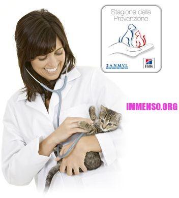 veterinario gratis