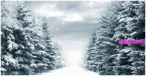 nevicata in wordpress