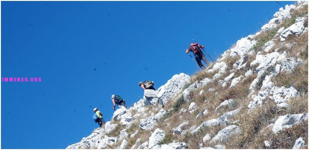 nature trend escursioni gratis