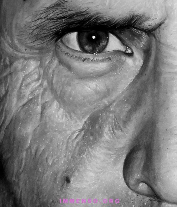 Neat Occhi Disegnati A Matita Realistici Xc95 Pineglen