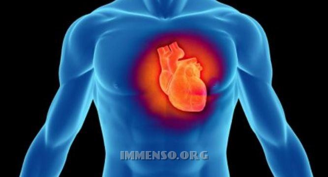 cuore infarto ischemia